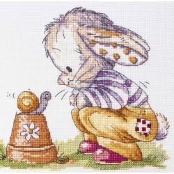 Copertina coniglietto e...
